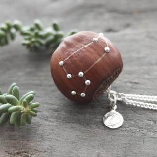 Haselnuss Halskette Sternzeichen Löwe 1 von 2 324x324 - Sternklare Haselnuss-Halskette –  Löwe