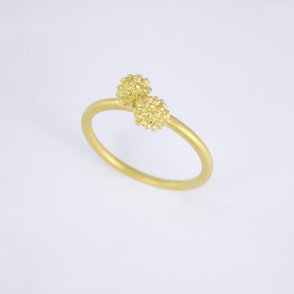 Mimosenring doppelt aus Gold 600x600 - Mimosenring doppelt aus Gold