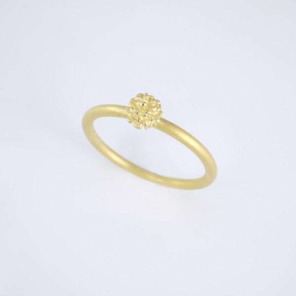 Mimosenring einfach aus Gold 600x600 - Mimosenring einfach aus Gold