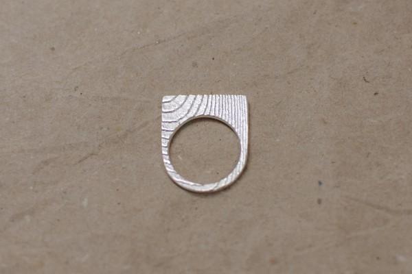 Ossa Sepia Ring halbrund 600x400 - Ossa Sepia Ring halbrund
